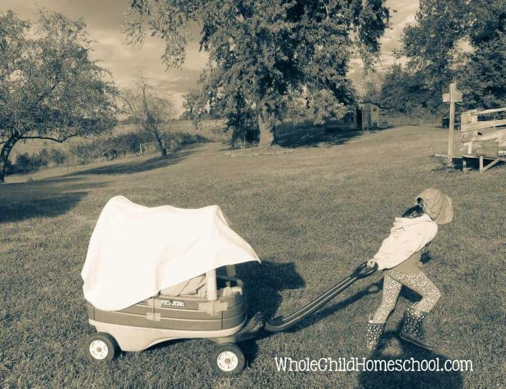 oregon trail wagon homeschool unit study